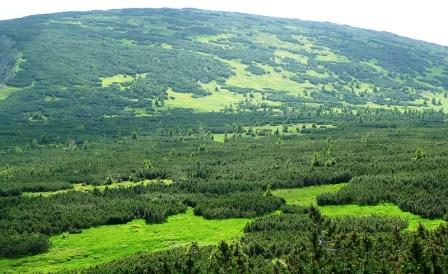 Krkonose Dağları 1